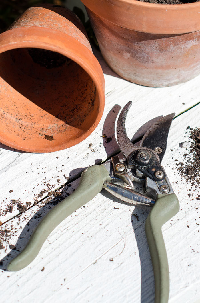 Keep your garden tools sharp with one easy to use tool.  #gardening #usefultools #summer #simpletips #andersonandgrant