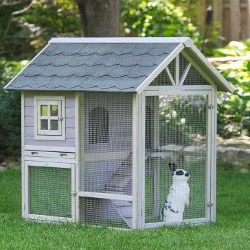 Kandang Kelinci Di Taman