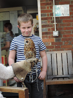 pet owl in coal echange pub emsworth