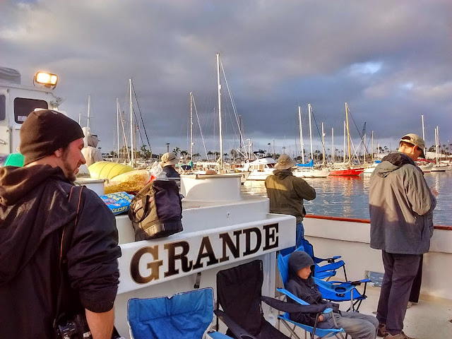 Grande -- Point Loma Sport Fishing