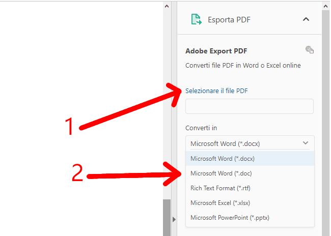 Selezione del file in PDF da convertire