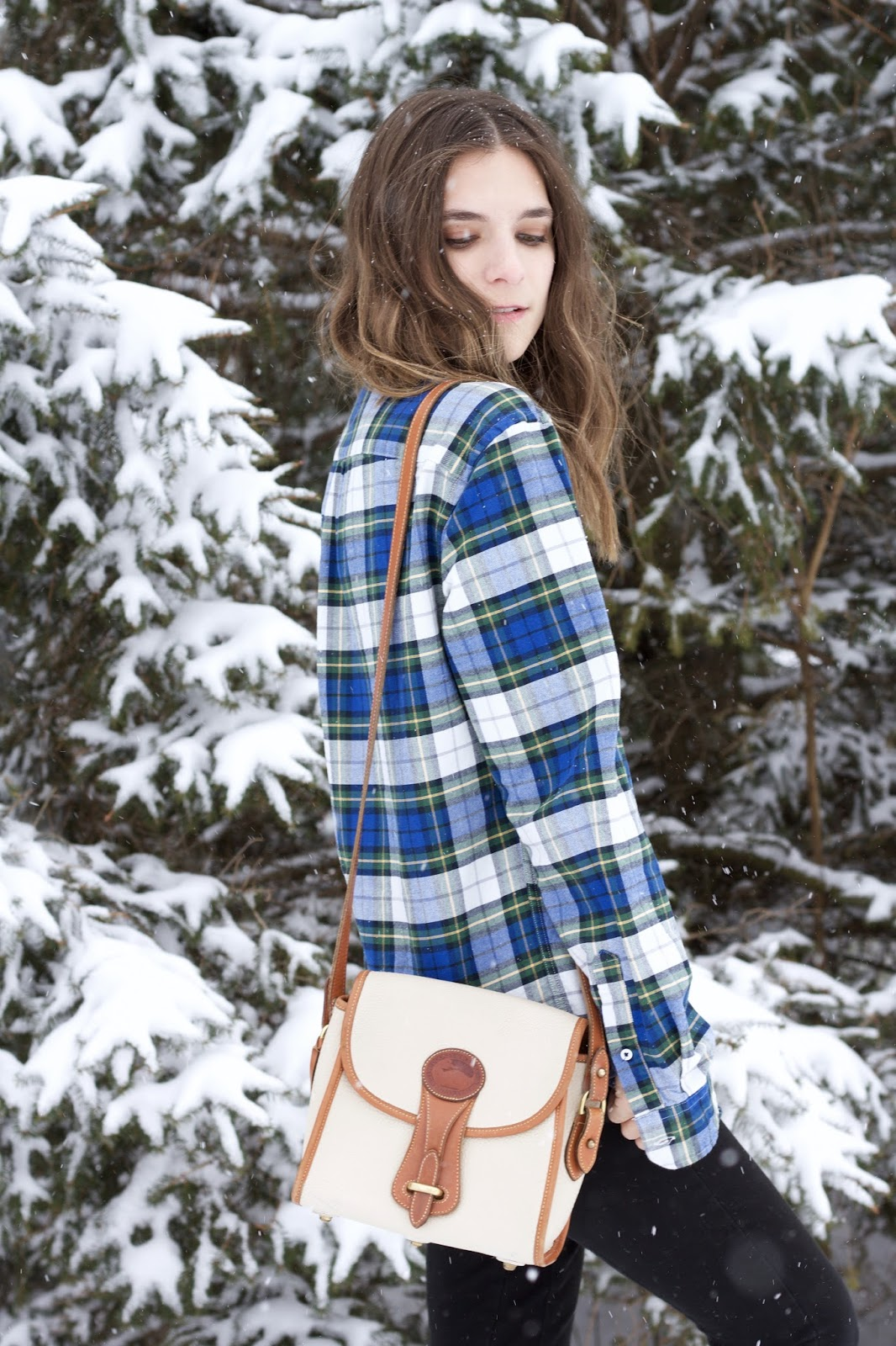American Eagle green and blue plaid top