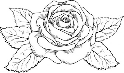 Imagenes de rosas, Flores para colorear