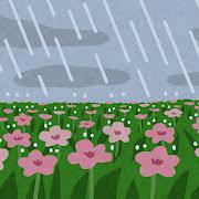 雨が降るお花畑のイラスト(背景素材)