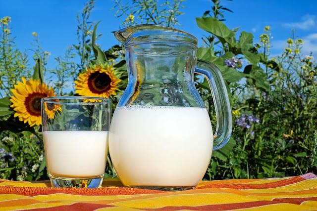 milk jar flower sun blue sky green leaf glass