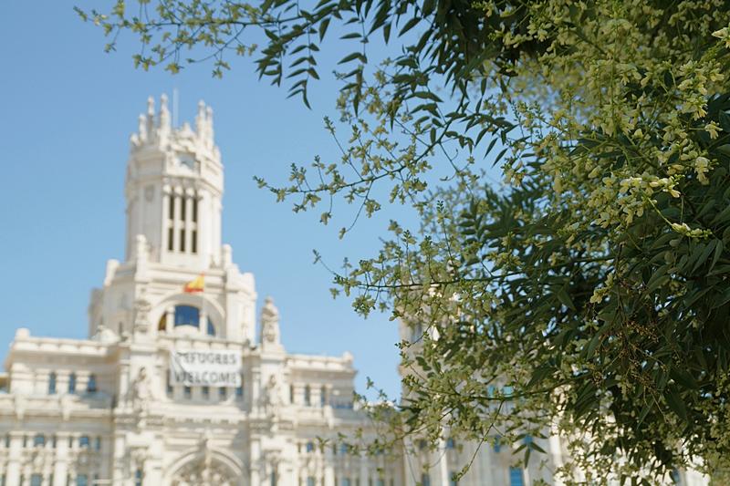Bokeh Madrid Rathaus im Sommer // Madrid Town Hall