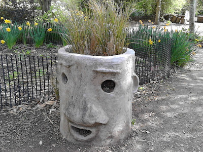 Man in a pot Improve your garden Hillier Gardens Green Fingered Blog