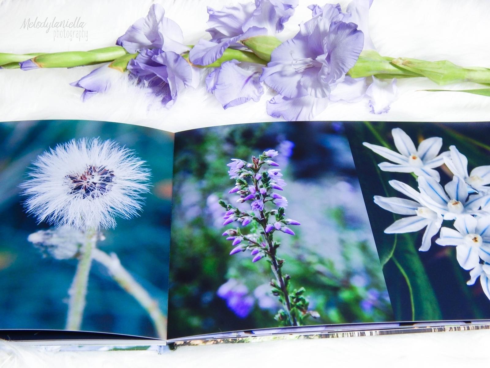 saal digital fotoksiązka recenzja melodylaniella blog pomysl na prezent fotografia fotograficzne prezenty .JPG kwiaty