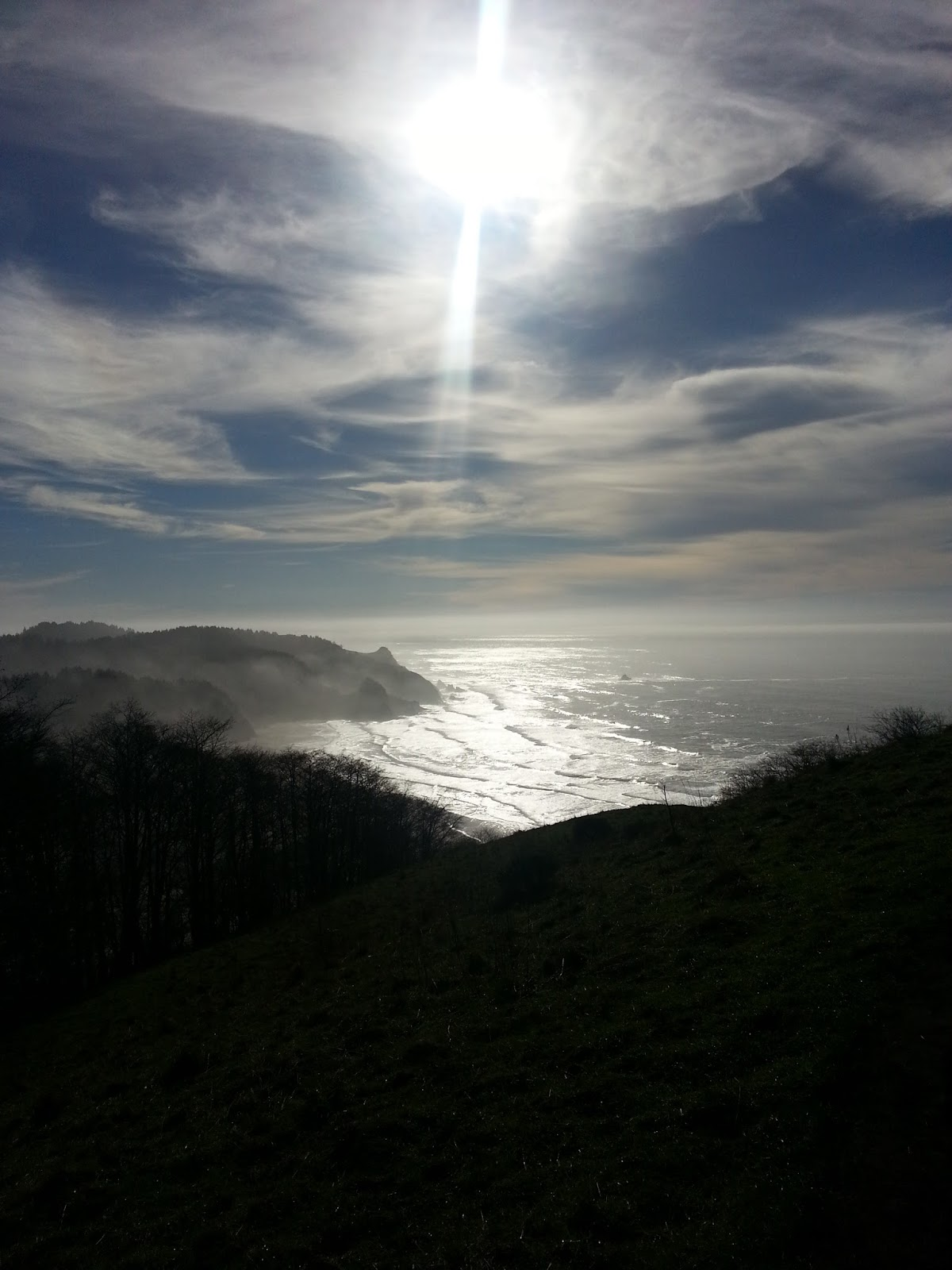 Cascade Head Natural Area Hiking Trail Lincoln City Oregon