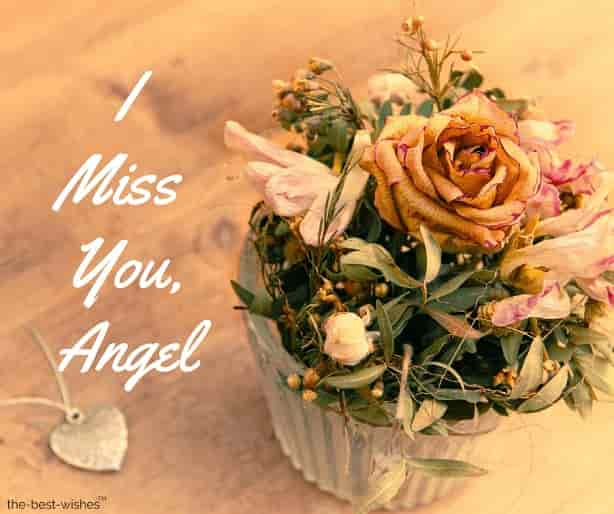 i miss you angel