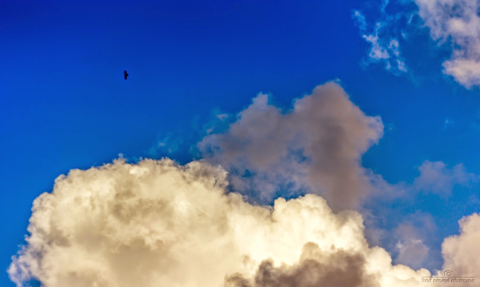 Cloud formaion with a flying eagle in the frame