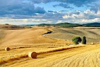 Val d'Orcia rotoballe di grano
