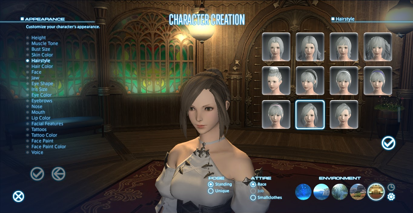 A Tank and a Healer : Final Fantasy A Realm Reborn: Character Creation