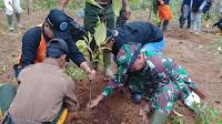 1.500 Pohon di Tanam di Lokasi Longsor Salem