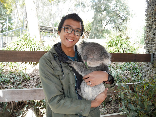 My first hug with Koala!
