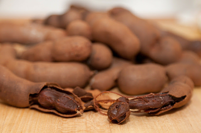 tamarind seed for health, tamarind seeds, myanmar tamarind seed, myanmar tamarind with seeds, myanmar tamarind without seeds