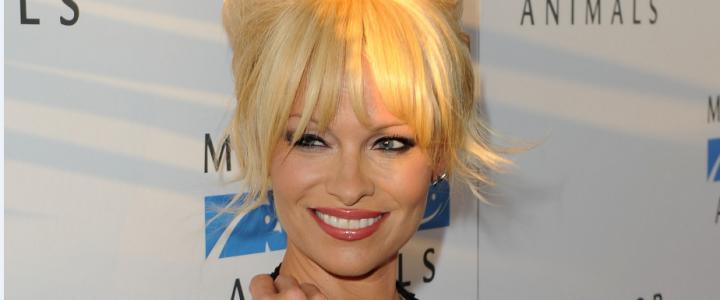 Las confesiones sexuales de Pamela Anderson