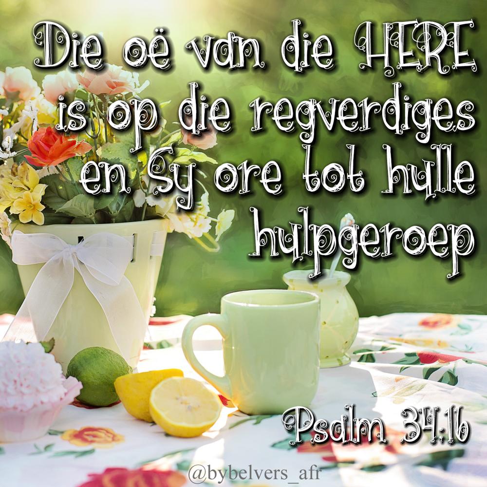 Die oë van die Here is op die regverdiges, en sy ore tot hulle hulpgeroep. PSALMS 34:16 AFR53 #afrikaans #bybelvers