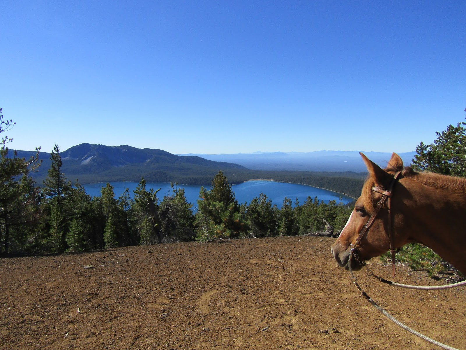 Holly Blogs Her Adventures: Chief Paulina Horse Camp ...