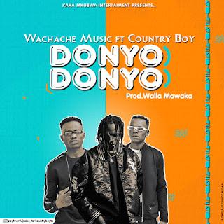 Audio Wachache Music X Country Boy - Donyo Donyo Mp3 Download