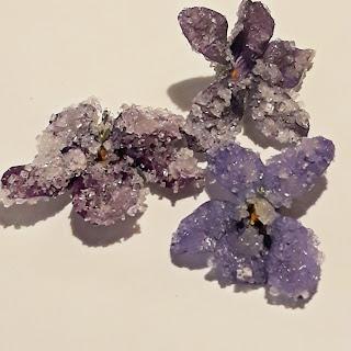 violette brinate con gomma di acacia