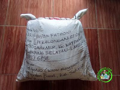 Benih pesana ARIFIN Lamsel, Lampung  (Sesudah Packing)