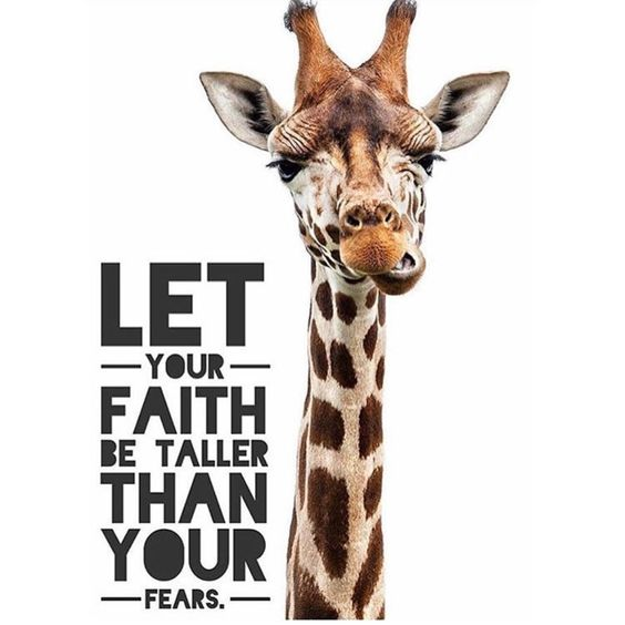 Giraffe Quotes Funny: Unity Stamp Company: DT Tuesday With Heather
