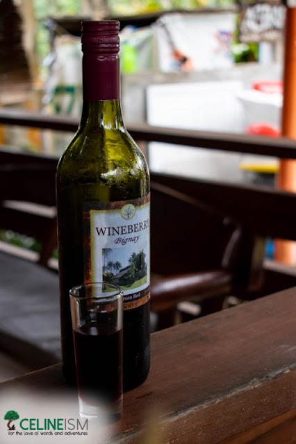 bignay wine baler
