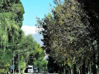 Estrada entre Árvores e Cordilheira dos Andes, Uspallata