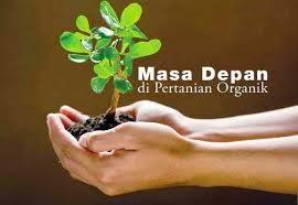 Pada artikel kali ini kita akan sama sama membahas masalah prinsip  Prinsip Pertanian Organik Yang Benar