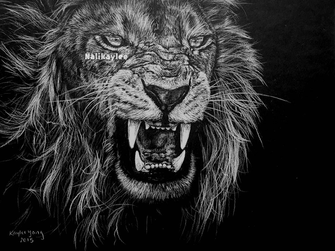 11-Lion-Kaylee-Yang-nalikaylee-Realistic-Drawings-which-Include-Animals-and-Objects-www-designstack-co