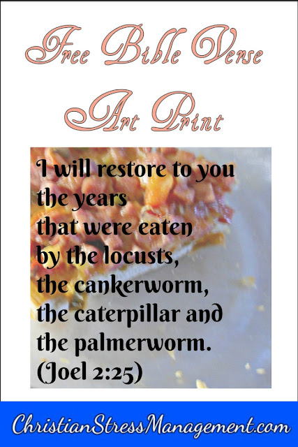 I will restore to you the years that were eaten by the locusts, the cankerworm, the caterpillar and the palmerworm (Joel 2:25) Bible verse art print.