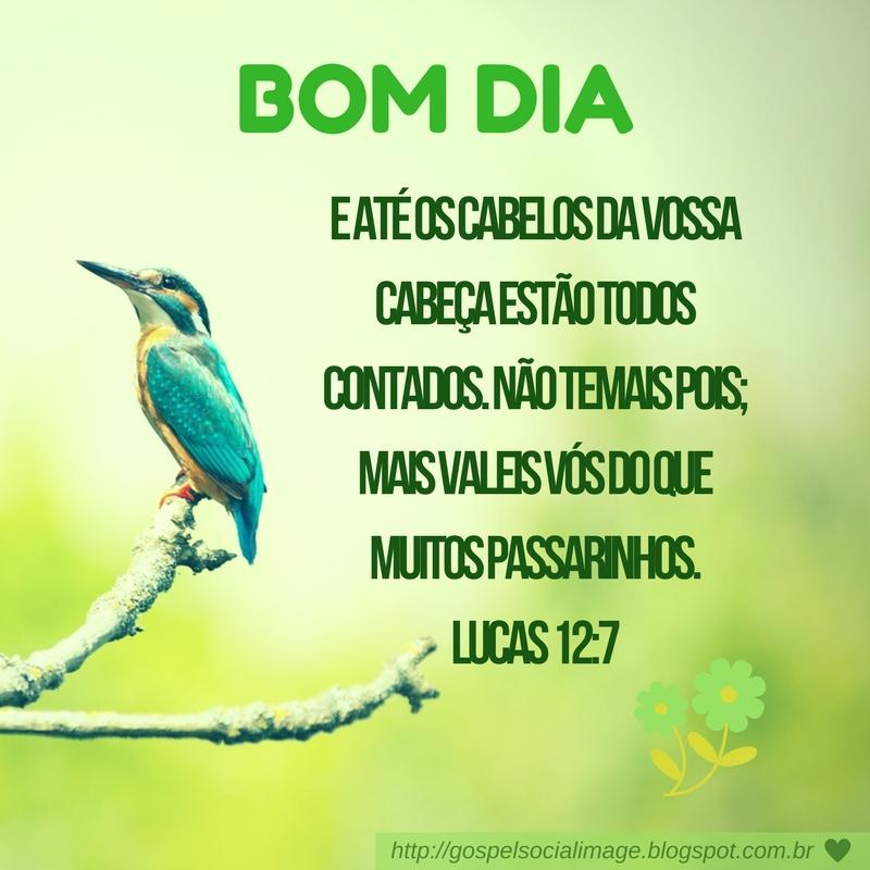 Imagens Com Frases De Deus Bom Dia Imagens Bíblicas