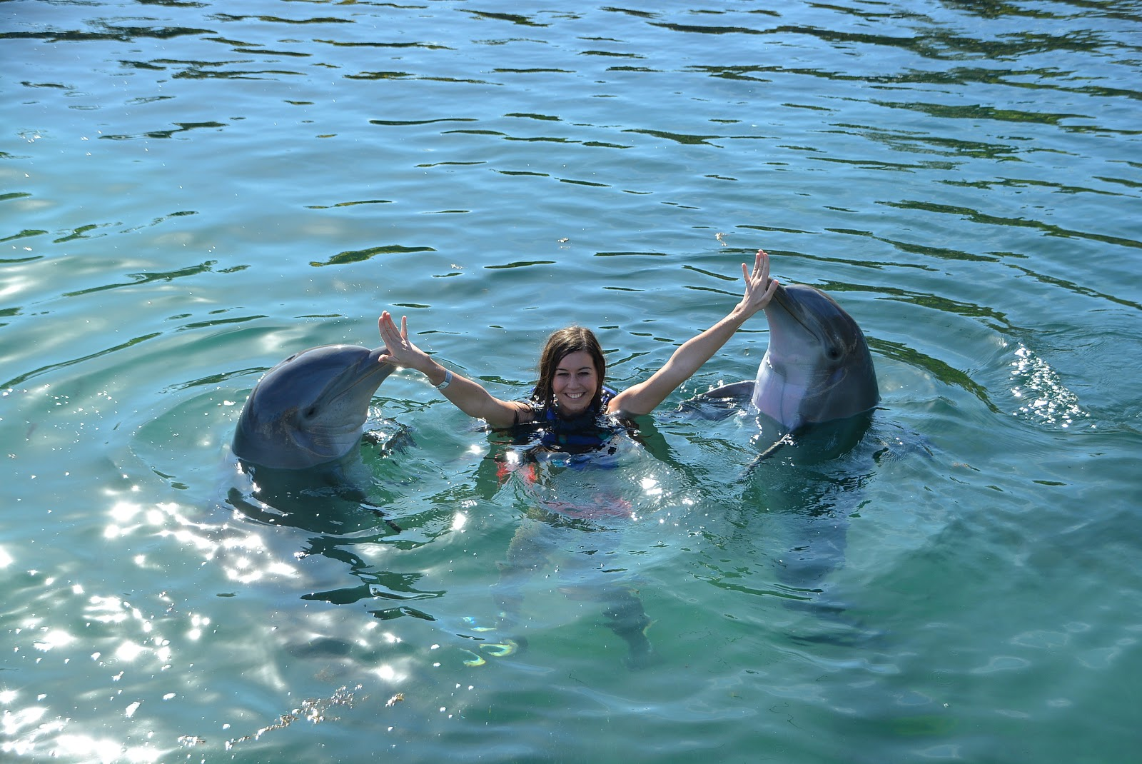 swimming with dolphins, dolphin experience, mexico, mexico vacation, delphinus riviera mava, xcaret, dolphin kisses, dolphin swim, ocean, ocean swimming,