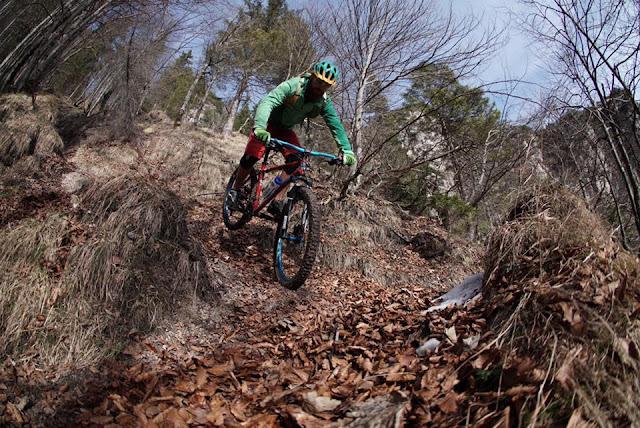 Richtige Mountainbiketechnik im Trail