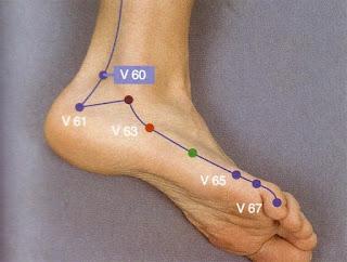punto vescica agopuntura