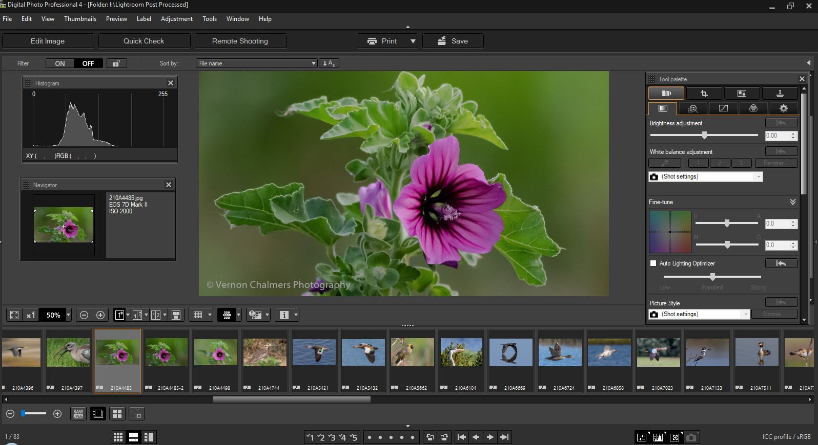 canon eos digital rebel software free download