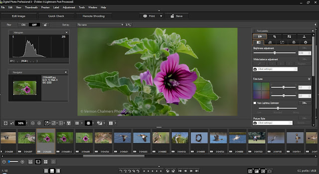 Download Canon Digital Photo Professional 4.10.0 for Windows