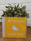 Attilion band rilis album ke 3 bertajuk Little Pony pada bulan Juli 2018
