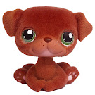 Littlest Pet Shop Multi Packs Pug (#439) Pet