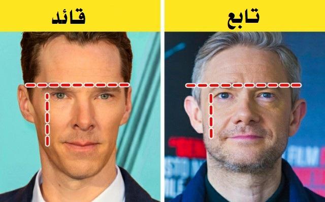 شكلُ الوجه