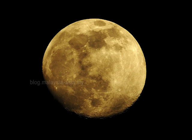 Orange Moon Picture