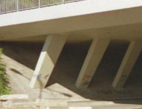 Struts reduce span of bridge reducing weight of concrete member
