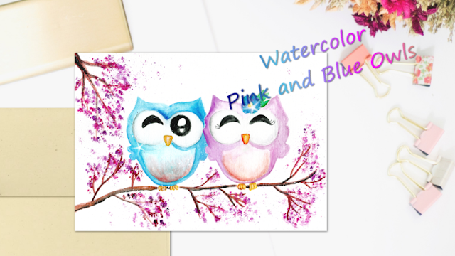 2 Little Owls Pink and Blue Time-Lapse