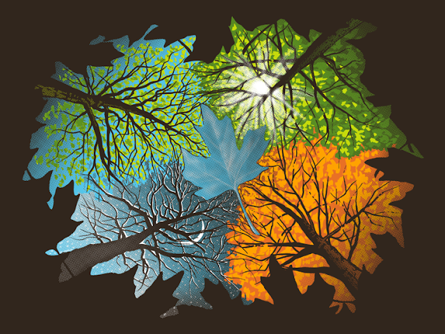 Earth's Tilt - The Reason For Change In The Seasons