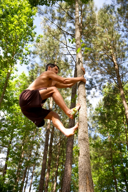 Tree Climber Exercises