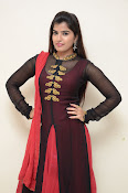 Keerthana at Rudra IPS audio launch-thumbnail-19