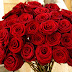 Roses for Valentines Day, Buy Roses Online