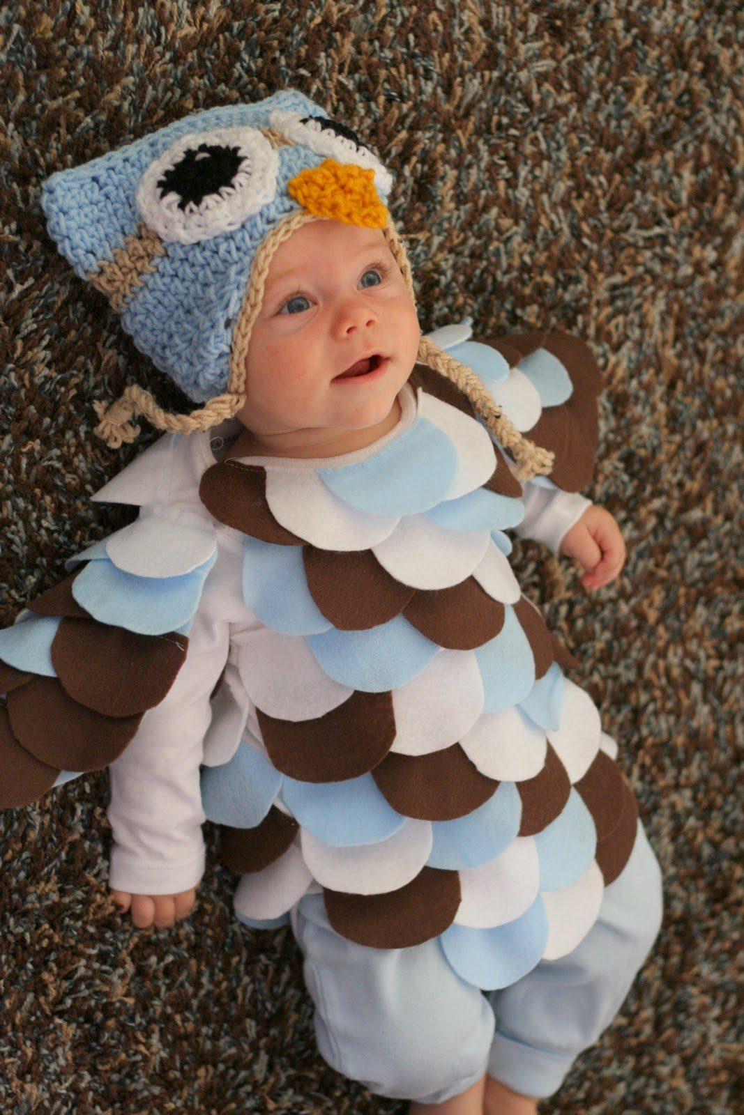 Baby boy owl costume - photo#3  sc 1 st  animalia-life.club : owl costume baby  - Germanpascual.Com