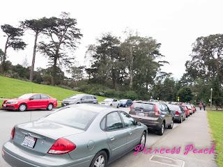 加州科學博物館的車潮